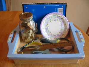 Science Tray w/journal, estimation jar & plates for counting items, ruler and magnifying glasses